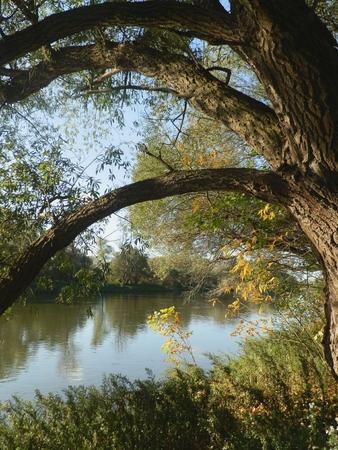 Magic River Stock Photo