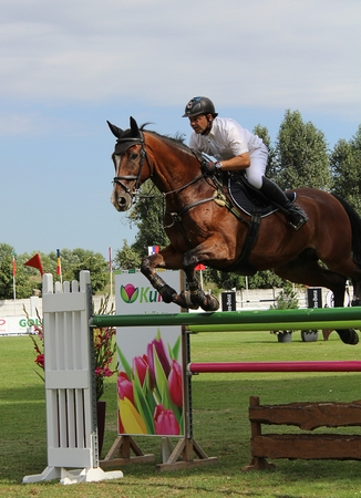 Show Jumping Competition, Jumping Horse