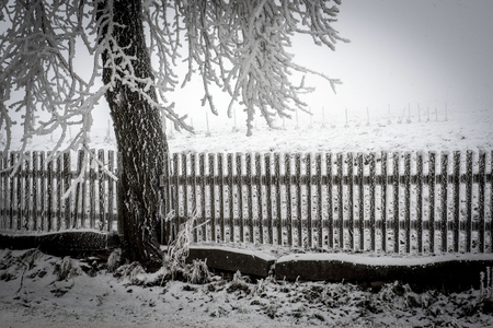 winter road: Snowy fence with a tree in winter Stock Photo