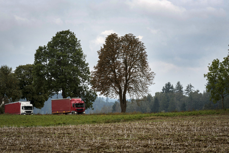 Two red trucks running along a small road between fields and trees