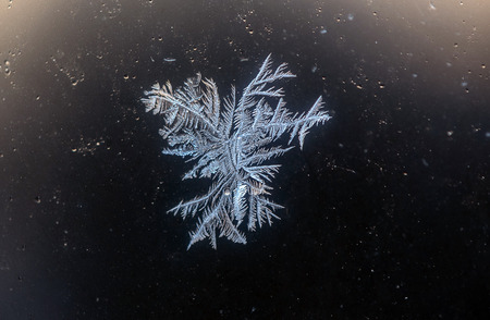 Frozen Snowflake on Glass Early Morning in Winter