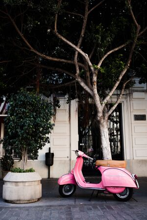 A pink retro scooter is parked in the street near tree.