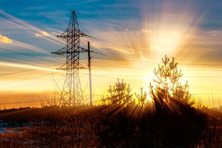 cut through: rays of setting sun cut through spruce power lines Stock Photo