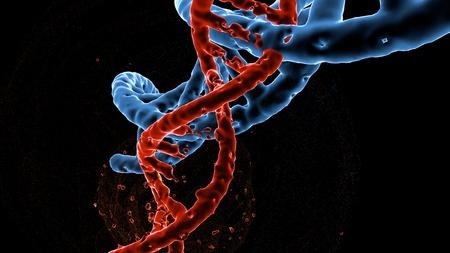 Dna double helix molecules and chromosomes , Gene mutation , Genetic code , 3d illustration - Illustration