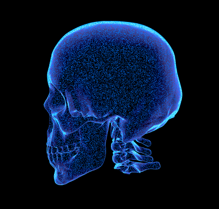 rendered bluish x-ray image of a human skull - oblique projection