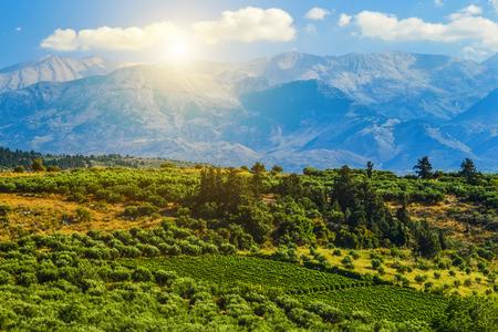 picturesque plateau in Greece on island of Crete Stock fotó