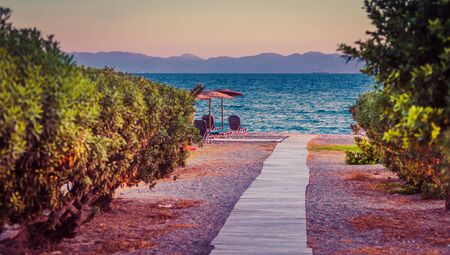 White sandy path between bushes and palm trees leading to beach. Greece, Rhodes Stock fotó