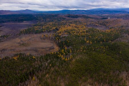autumn forest view from the drone, on background of mountains and clouds