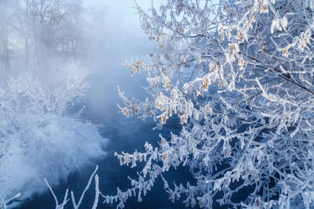 Winter nature landscape. Frosty trees on river side. Winter morning sunrise.