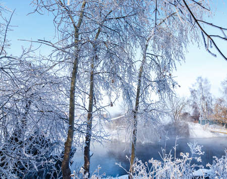 Fabulous winter landscape on the river. Fog. Bright winter sunny day. Winter in Russia. Christmas card. New Year.