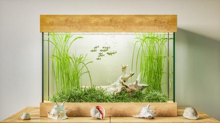 Fresh water aquarium 3d render