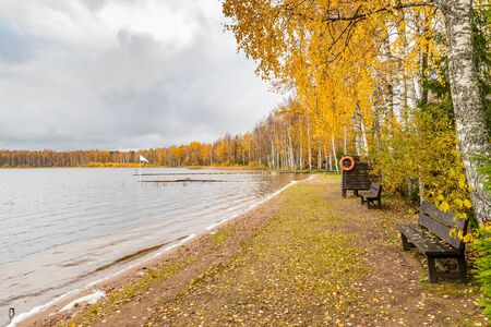 The Long pier on the lake, the Autumn at the lake Boroye, Valday national park, Russia, slow motion video, golden trees are on a background, wooden lodges, cloudy weather