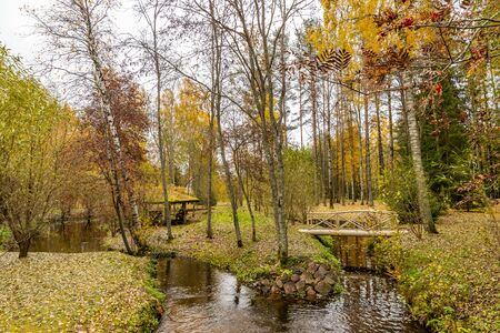 Forest lodge in backwoods, Wooden arbor, wild area in beautiful forest in Autumn, Specular reflection in water, Valday national park, yellow leafs at the ground, Russia, golden trees, cloudy weather Foto de archivo