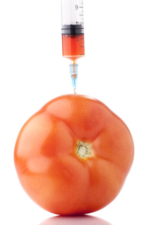 genetic food modification: Big red tomato with a syringe in it. Concept for GMO.