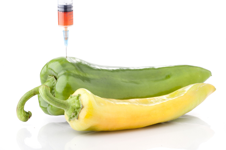surgical needle: Big paprika with a syringe in it and small paprika. Concept for GMO Stock Photo