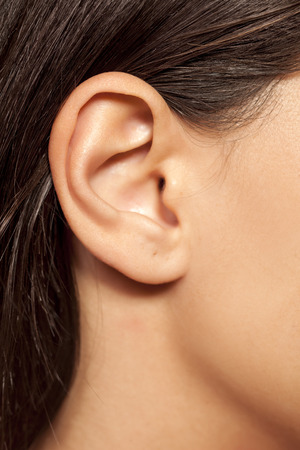 sexual anatomy: Close-up of a female ear