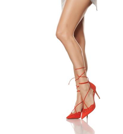 d3837af438587d  70234466 - feminine legs
