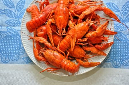 crayfish, Stock Photo