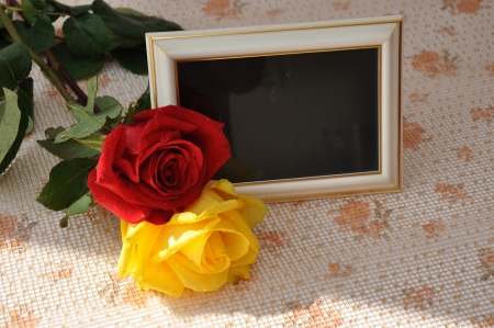 Photo frame  and the rose Stock Photo
