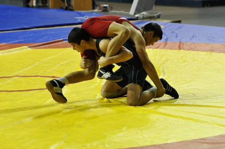 Competitions on Greco-Roman wrestling