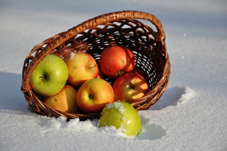 For the song Apples on the snow singer Michael Muromova Stock Photo