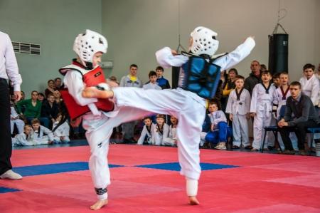 Die koreanische Kampfkunst Taekwondo Standard-Bild - 18479349