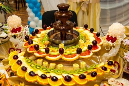 Chocolate fountain and fruit dessert Standard-Bild
