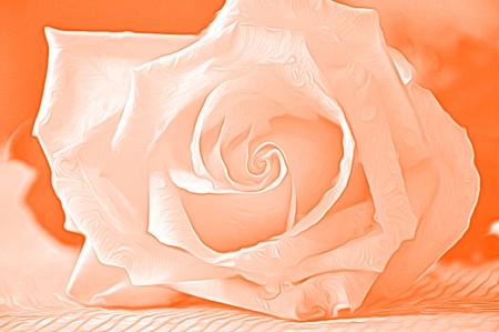 airbrushing: Rose para aerograf?a Foto de archivo