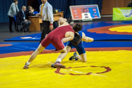 ORENBURG, ORENBURG region, RUSSIA, January 18, 2014 year. The competitions of the Orenburg region in sports wrestling Editorial