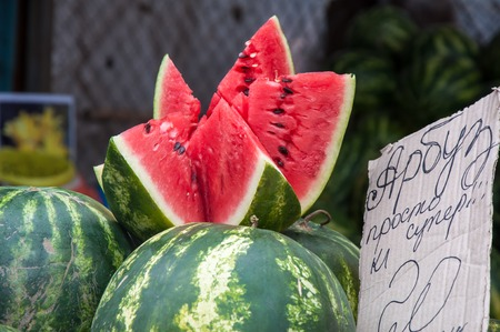 herbaceous  plant: Watermelon is an annual herbaceous plant, a species of Citrullus family Cucurbitaceae