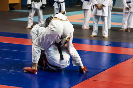 combines: Kobudo combines martial system envisioned in the Ryukyu Islands (modern Okinawa Prefecture, Japan) Stock Photo
