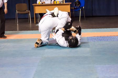 sensei: Kobudo Japanese martial art of self-defence without arms Stock Photo