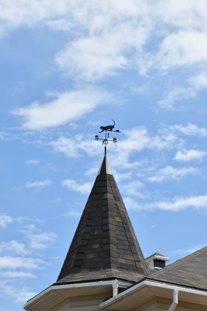 Weather vane on the steeple village house