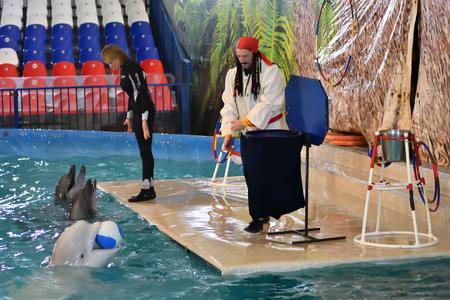 bottlenose: Orenburg, Russia - November 8, 2017 year: Belukha (LAT. Delphinapterus leucas) in the Dolphinarium throws the ball into the basket