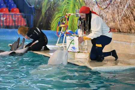 Orenburg, Russia - November 8, 2017 year: Dolphins and Belukha (LAT. Delphinapterus leucas) in the Dolphinarium Paint paints a picture