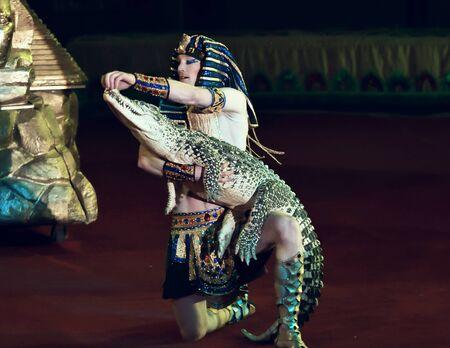 Orenburg, Russia - October 12, 2019: Trainer and crocodile in the circus arena 報道画像