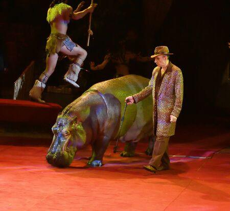 Orenburg, Russia - October 12, 2019: Trainer and hippopotamus in the circus arena 写真素材 - 131742951