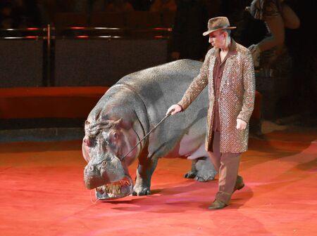 Orenburg, Russia - October 12, 2019: Trainer and hippopotamus in the circus arena 写真素材 - 131742963