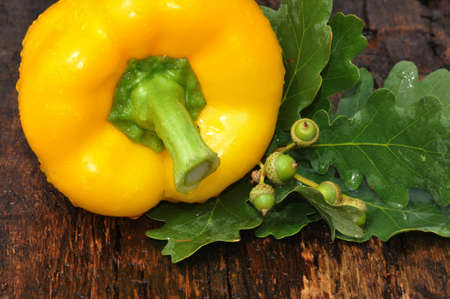 Sweet Yellow pepper on an old wooden countertop