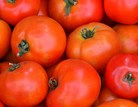 Ripe tomatoes of the new harvest are sold in the bazaar