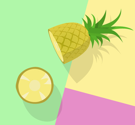 Pineapple chunked. Top view image on pastel colors background. Line art illustration for poster, banner, t-shirt 向量圖像