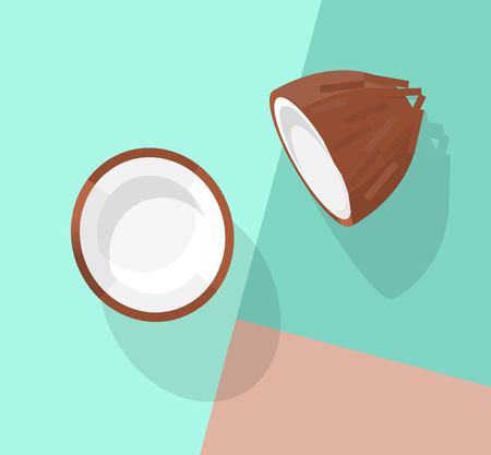 Coconut chunked. Top view image on pastel colors background. Line art illustration for poster, banner, t-shirt