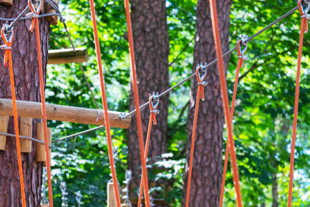A bridge of logs tied to ropes, part of the rope route. Extreme sport.
