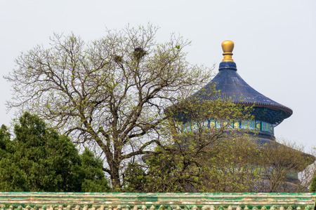 heave: Famous blue roofs of Temple of Heave through the branches of a tree Stock Photo