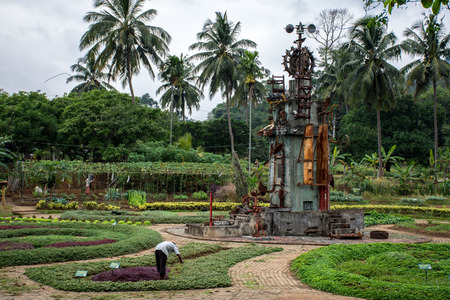 Man looks after the greenery on the field. The structure of the metal in the middle of the field with green plants. The structure of old metal spare parts for scaring birds. Sri Lanka, Dambulla