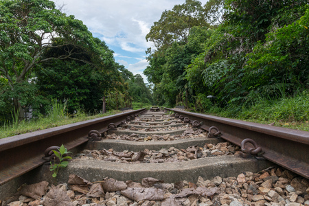 View along the railway. Old railroad across the bridge. The road for the train on the sides of the green vegetation and forest