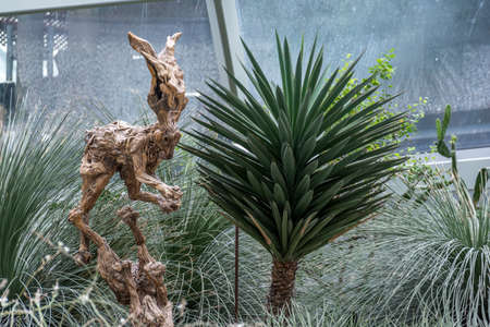 Sculpture of a tree in the form of a hare near a round plant with needles in Gardens By The Bay