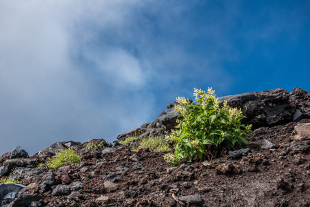 View of Mount Fuji, climbing the mountain