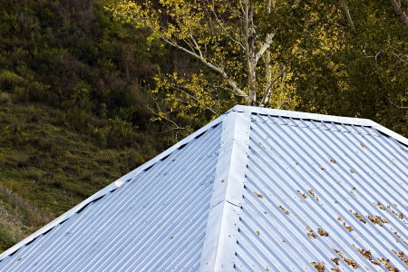 corrugated iron: The house with gray corrugated roof by autumn
