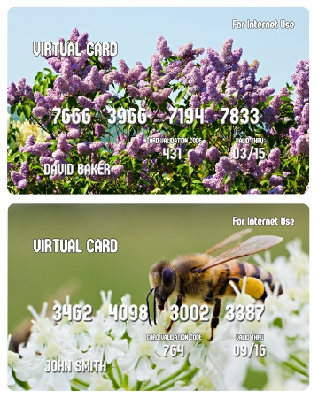 Two credit cards for Internet use (one with a lilac bush, other with a bee on the flower) isolated on white photo